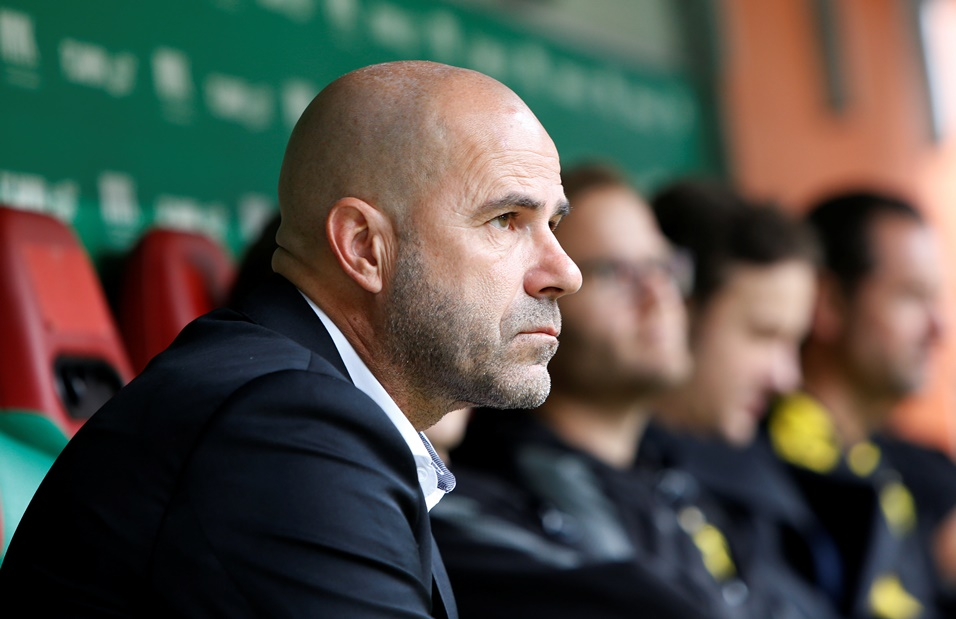Peter Bosz has made a stunning start to his reign at Borussia Dortmund