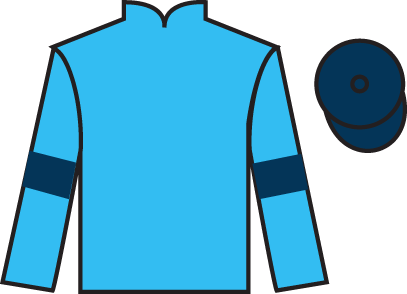 Highclere silks.png