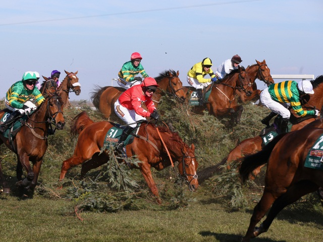 Shutthefrontdoor has been well backed to go well in today's Grand National