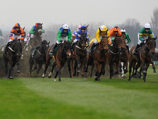 Who are you backing in the National?