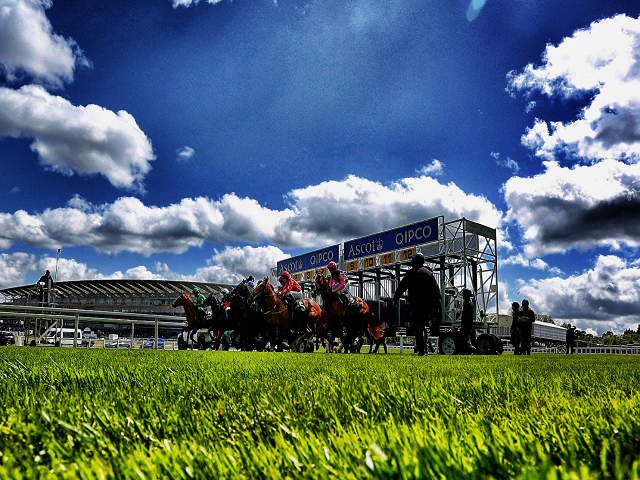 Ascot is one of the many racecourses staging Saturday action