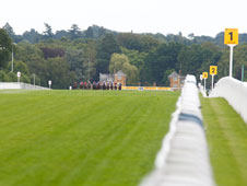 Ascot will once again play host to the Shergar Cup