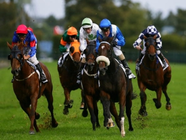 Racing comes from Rosehill on Saturday