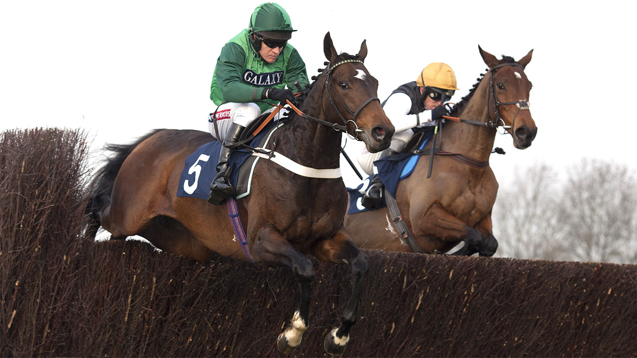 There is jumps racing from Bangor on Wednesday