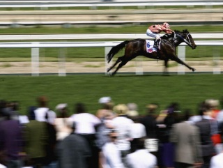 Can Black Caviar land the World Sprint Challenge?