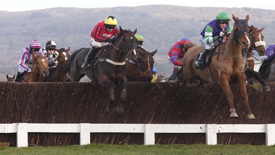 Bless the Wings (centre) en route to victory at Cheltenham in 2012. Can he triumph at Cork on Sunday?