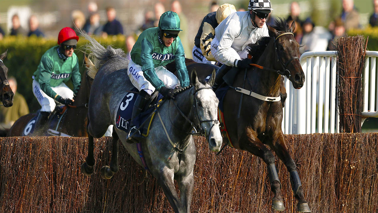 Adam Baylis expects Bristol De Mai to go well in the Charlie Hall Chase