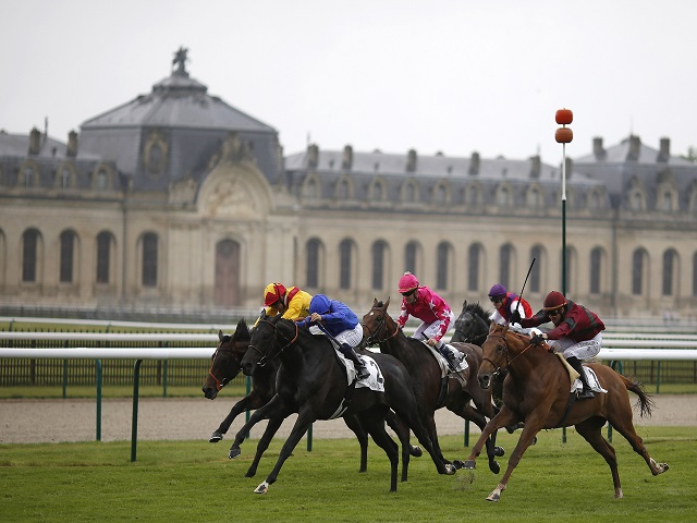 Ryan rides Rhododendron at Chantilly (above) on Sunday