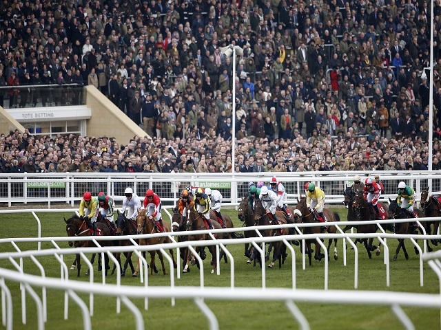 We're just over a week away from the start of the 2017 Cheltenham Festival