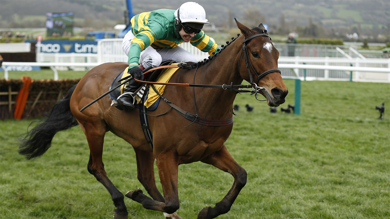 There is jumps racing from Exeter on Wednesday