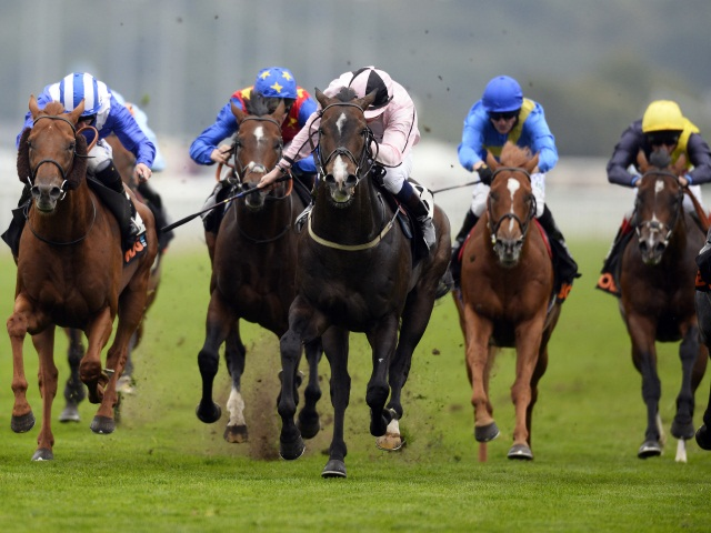 There is high-class Flat racing from Doncaster on Thursday