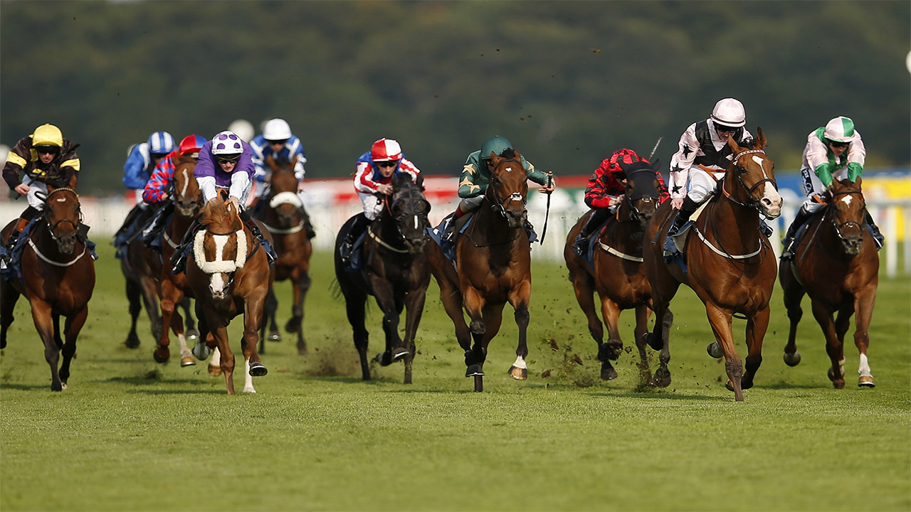 John Gosden aims to win another renewal of the November Handicap