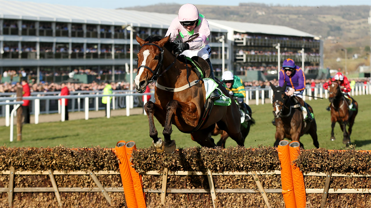 Faugheen was very impressive in his comeback run on Sunday and is now favourite for the Champion Hurdle