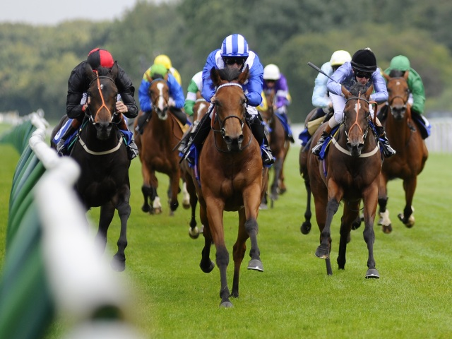 There is Flat racing from Newmarket and Newbury on Saturday