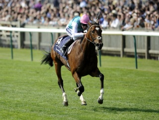 Frankel's rating puts him ahead of recent greats like Sea The Stars and Harbinger
