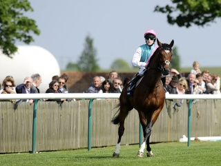 Frankel: Out on his own.