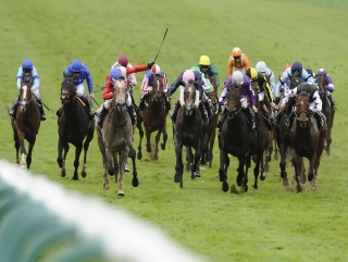 Betfair horse racing trading strategy