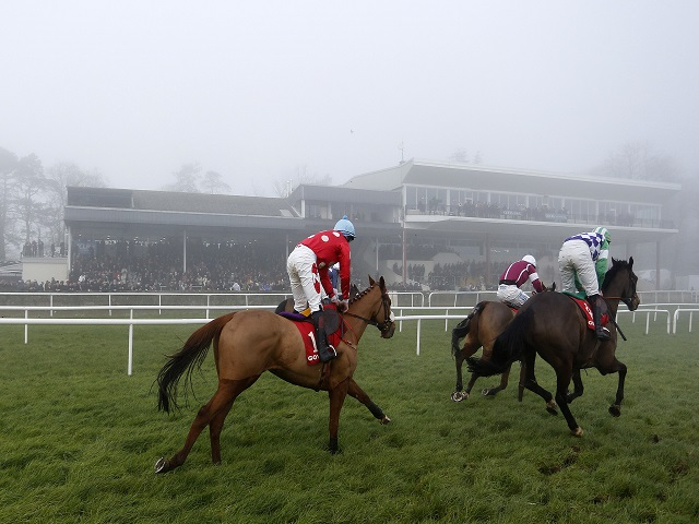 There is a mixed card from Listowel on Wednesday