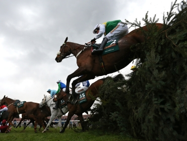 Tidal Bay heads the 65 remaining in the Grand National