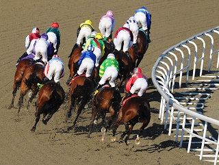 Kempton will host the Snowdrop Fillies' Stakes on Saturday