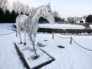 Will racing be frozen out on Boxing Day?