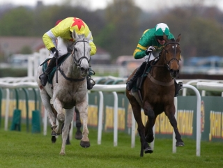 Grey Neptune Collonges gets up to deny Sunnyhillboy
