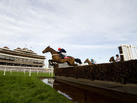 It promises to be a special day out at Newbury