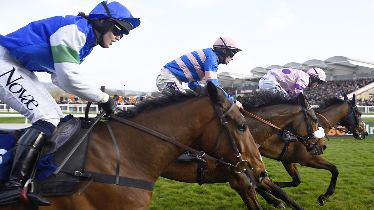 Today's best bet Cloudy Dream runs at Cheltenham
