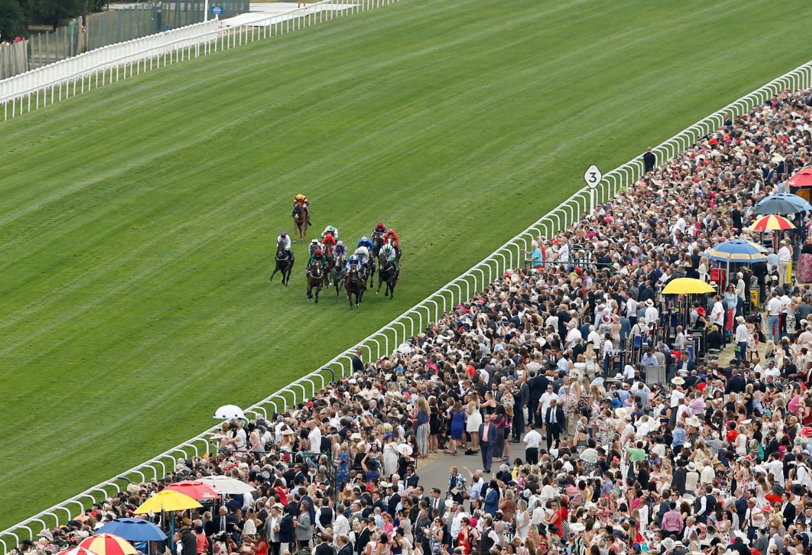 Five more Ascot selections for TC on Saturday