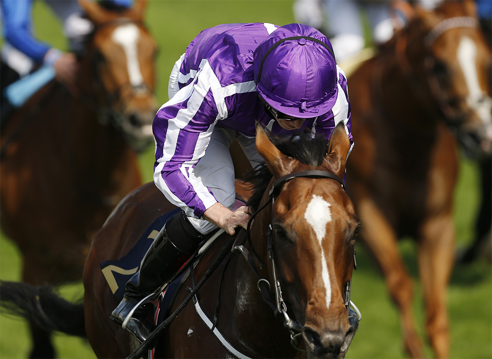 Ryan Moore rides Roly Poly in the Sun Chariot Stakes