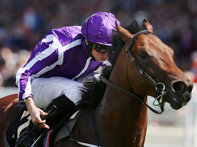 Ryan Moore partners Across The Stars in Saturday's Newbury Arc Trial