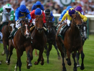Sea The Stars lands last year's 2000 Guineas