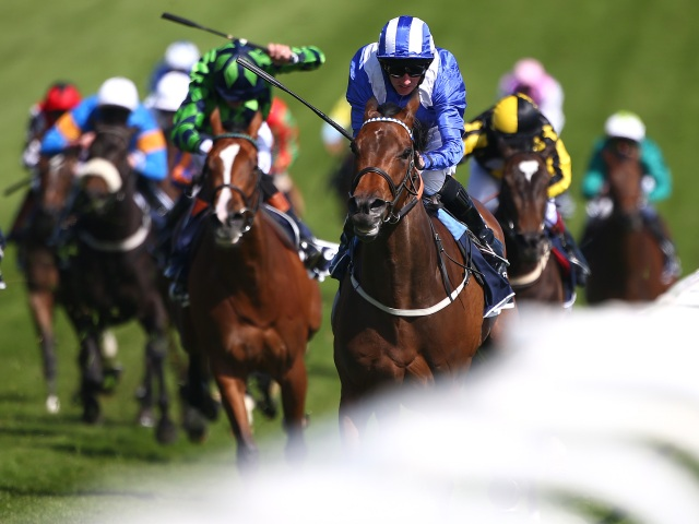 The 2017 Derby looks one of the most open in recent memory