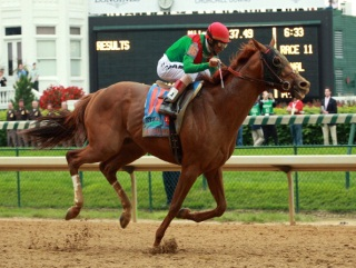 Read More Horse Racing