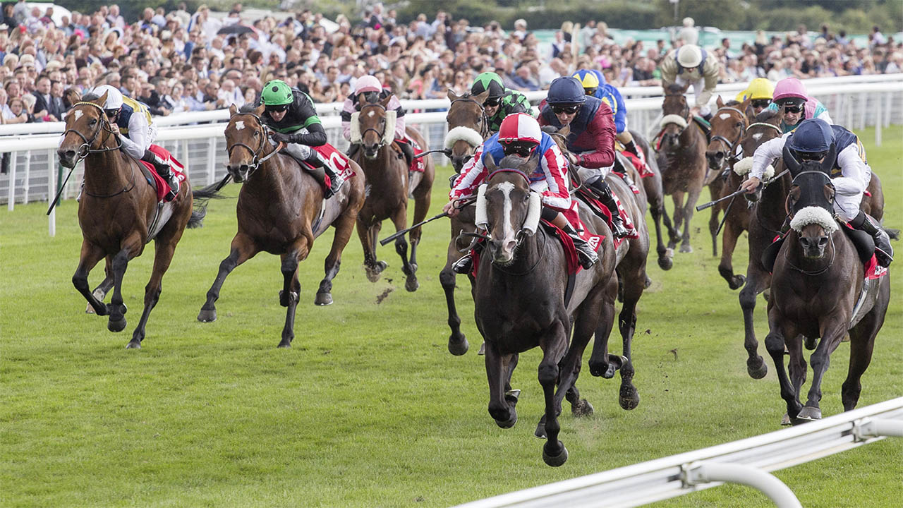 Hugo gives his view on the chances of Architecture in the St. Simon Stakes