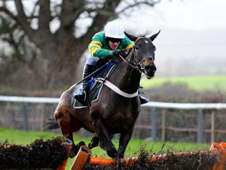 radio 4 horse racing tips