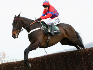 Sprinter Sacre is favourite for the 2013 Champion Chase