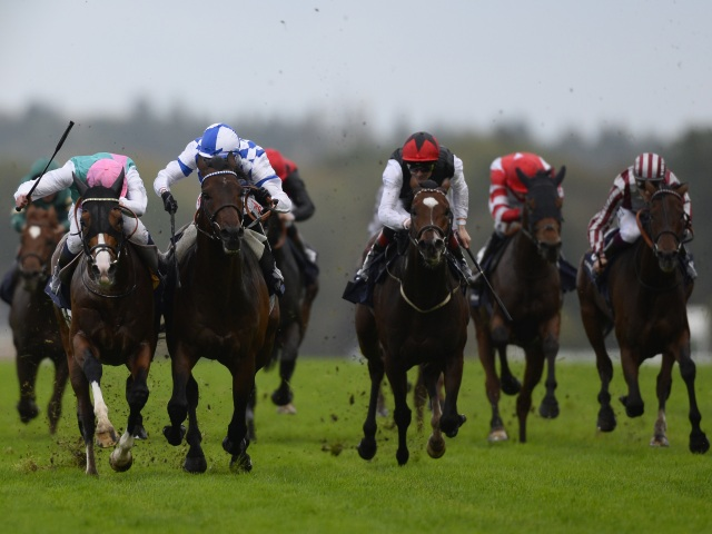 There is high-class racing from British Champions Day at Ascot on Saturday