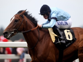 Harbinger is the second horse in the last two years to be rated 140 by Timeform