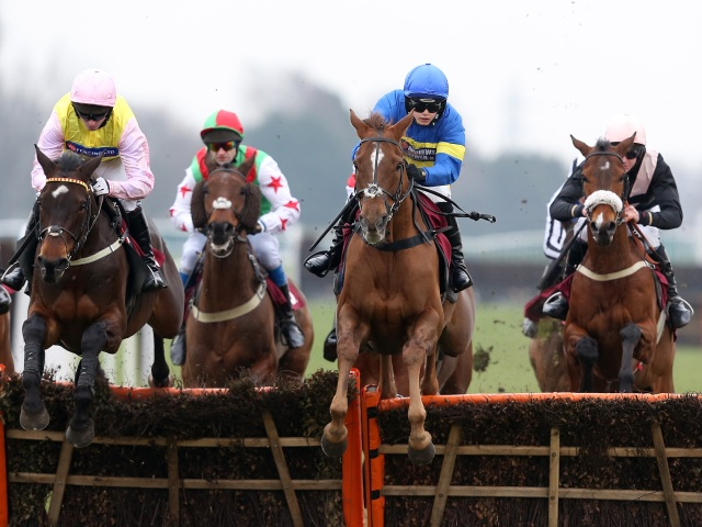 Tony is backing Warrantor in the 15:15 at Haydock (above) on Saturday