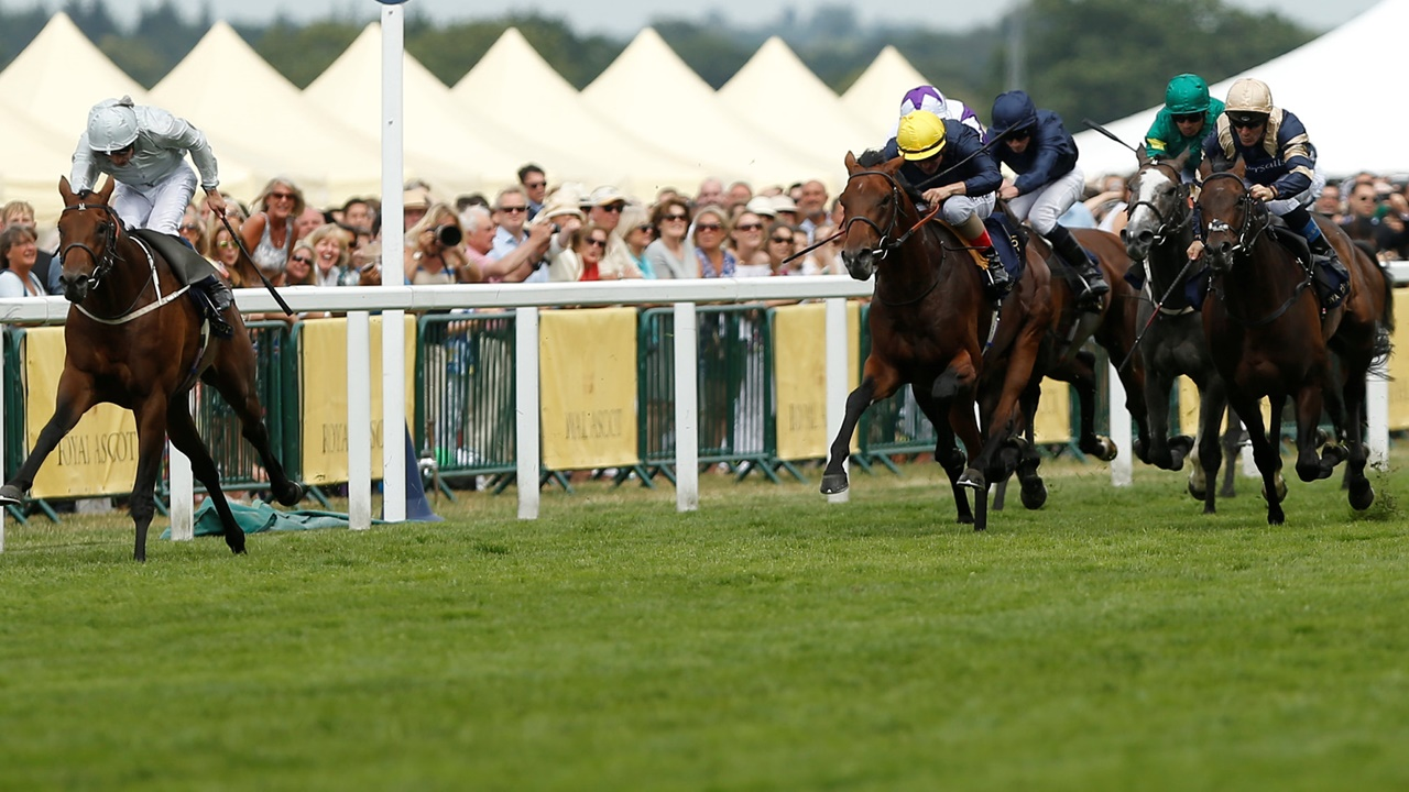 There is high-class racing at Ascot on Saturday