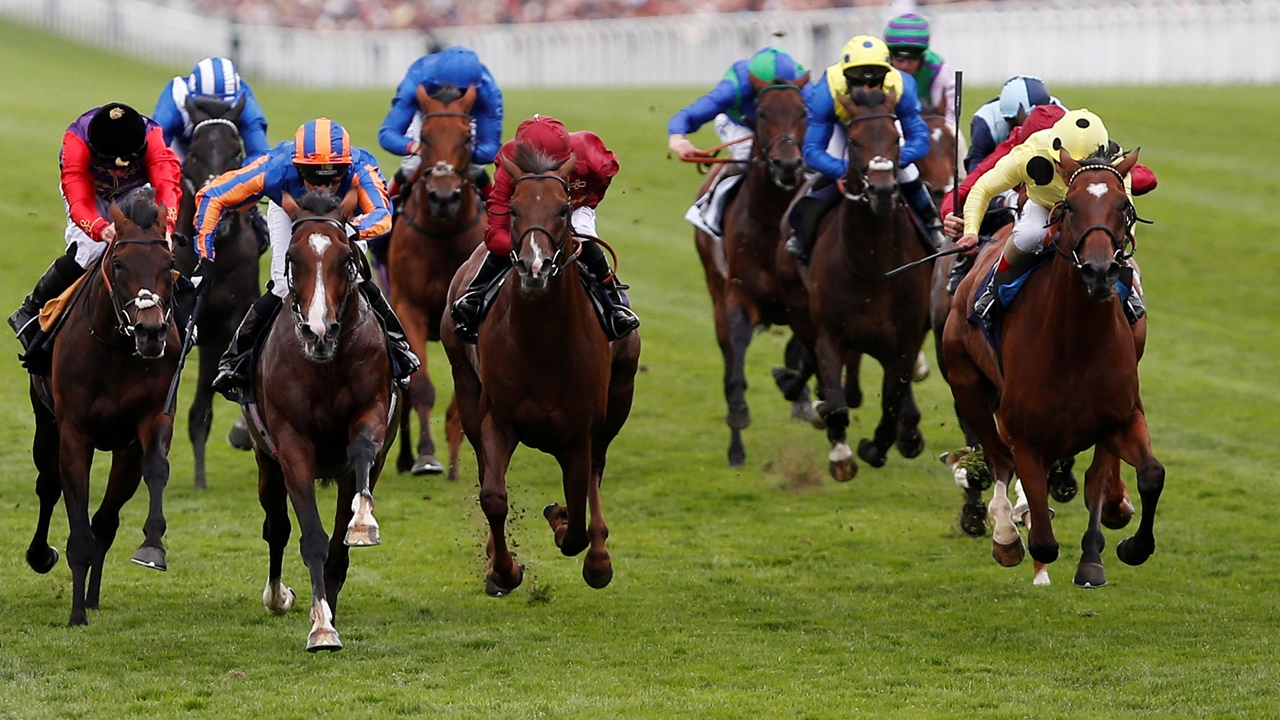 There's top-class racing from Ascot on Saturday