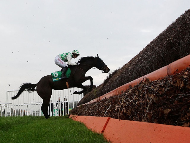 Tony is staying loyal to his ante-post pick Ballynagour in Saturday's Grand National