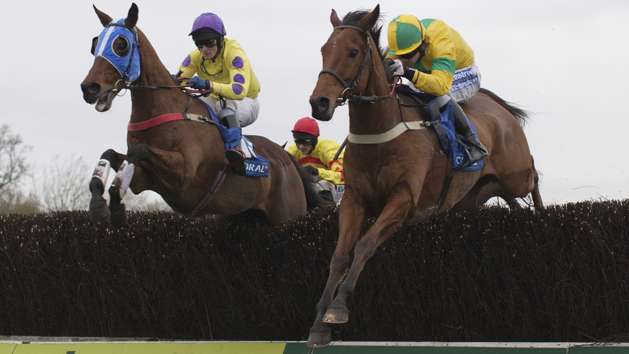 There is jumps racing from Plumpton on Monday