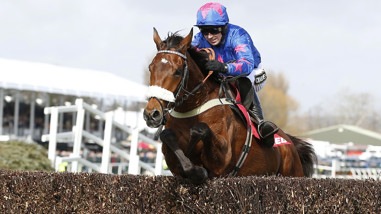Cue Card, trained by Colin Tizzard, will aim to win another Betfair Chase in 2017