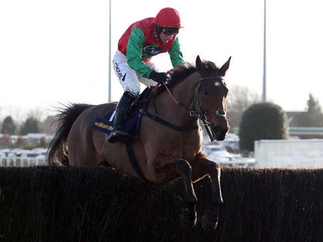 Paul reveals that Dodging Bullets is on course to defend his Champion Chase crown