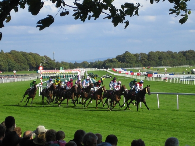 Twilight Son's win in the Sprint Cup at Haydock (pictured) was our first ever joint winner