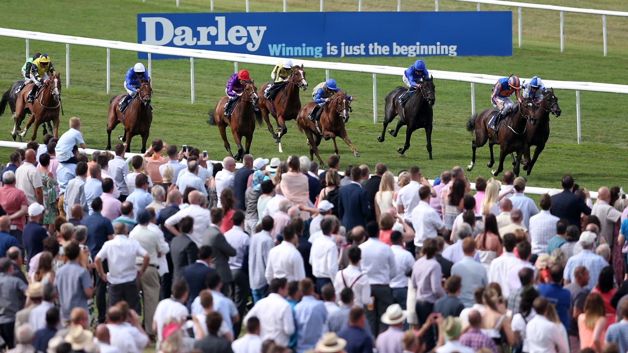 There is high-class Flat racing from Newmarket on Friday