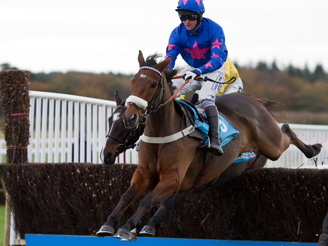 The popular Cue Card bids to win the King George for a second year running