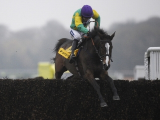 Paul Nicholls will be providing regular updates on the fitness of Kauto Star in his Betfair column